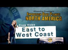 Crew Video: East to West